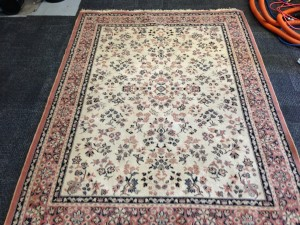 rising star carpet cleaning ipswich ma